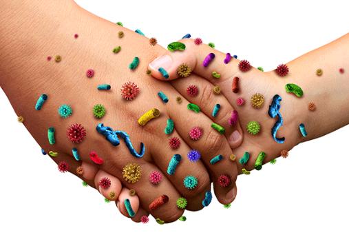 Mieux connaitre les maladies fréquentes